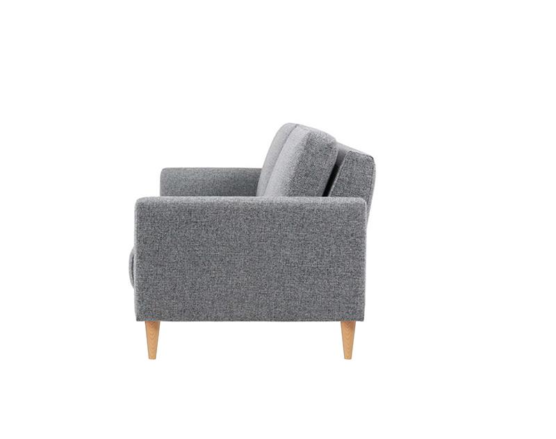 dviviete-sofa-su-miegojimo-funkcija
